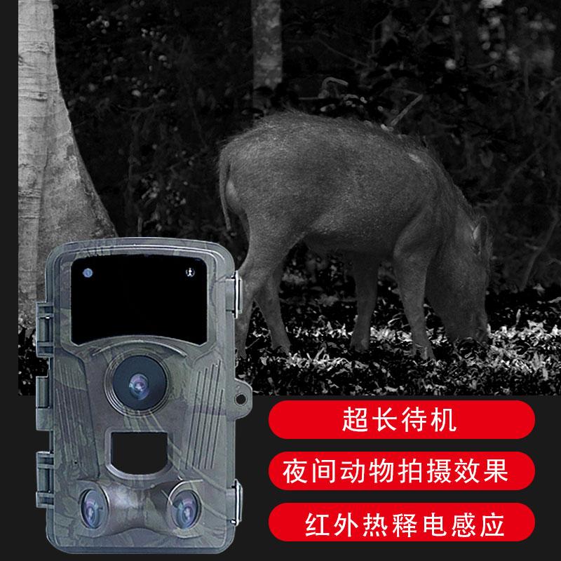 高清红外相机