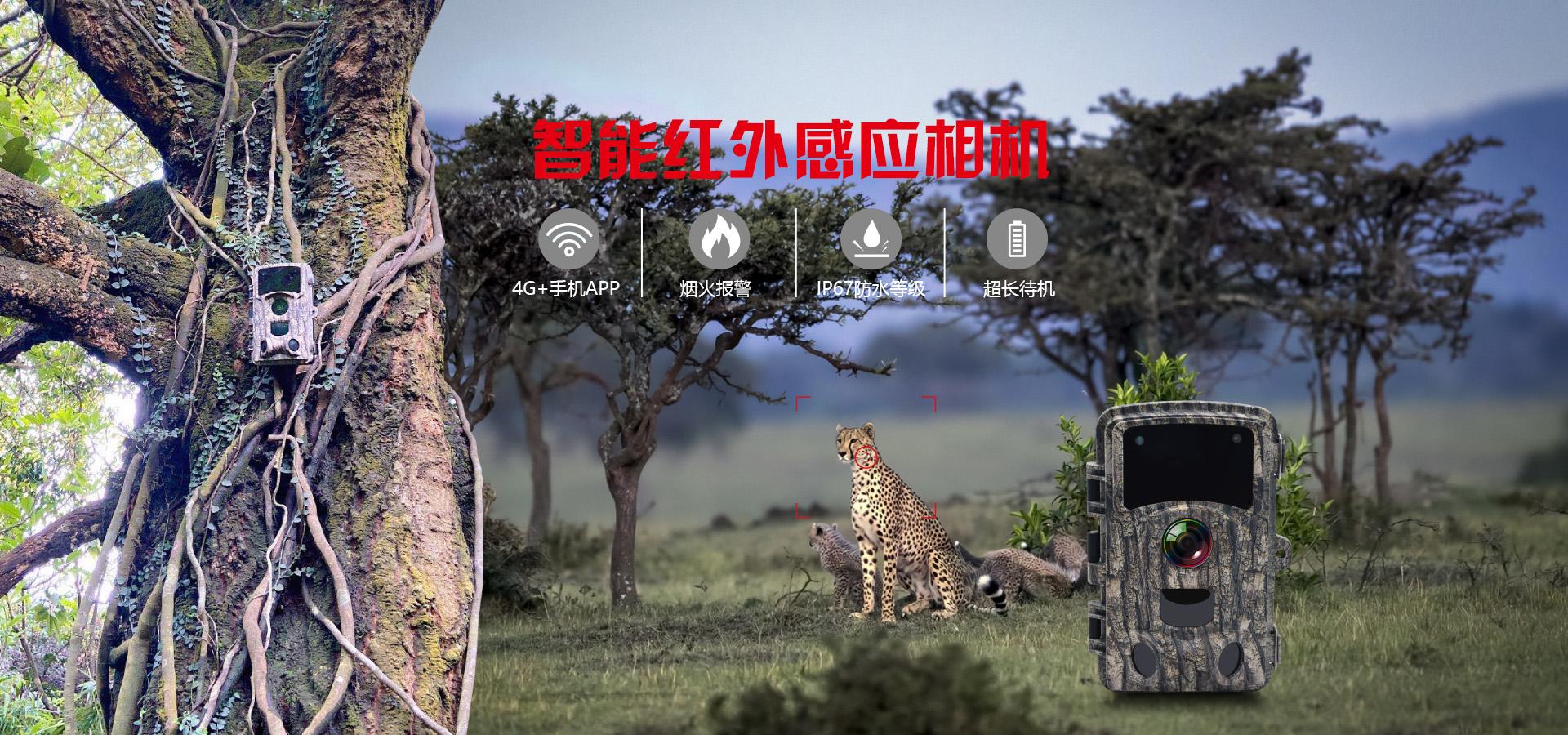 打猎相机,林业相机