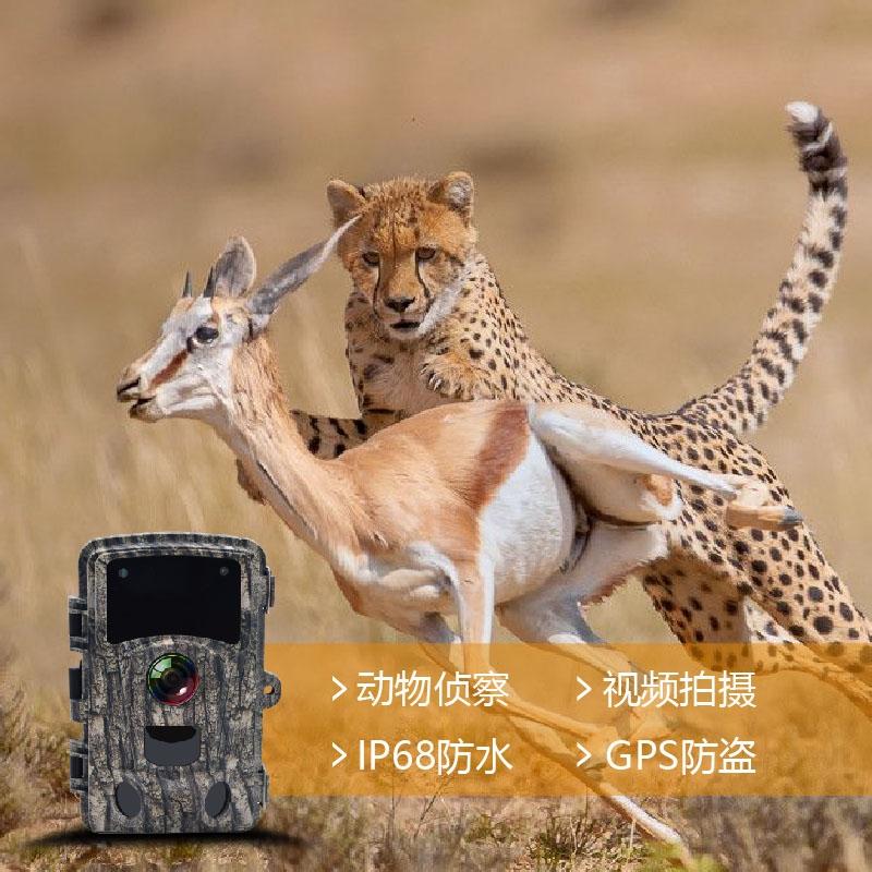 户外监控摄像头